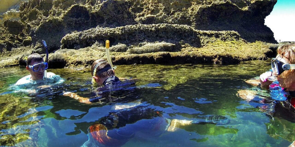 leisurely snorkelling in the rockpools at Gericke's Point