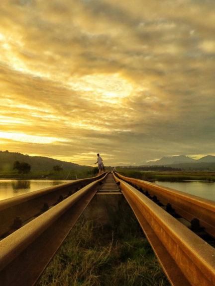 Knysna's Timber Train