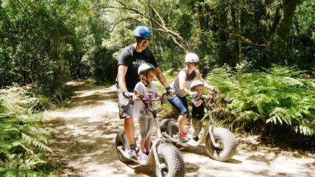 Scootours in the Knysna Forest