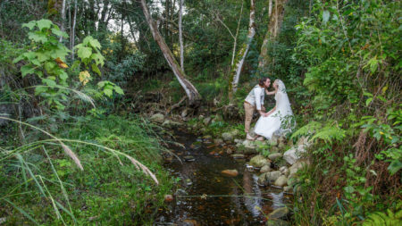 Jubilee Creek, Rheenedal