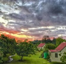 Forest Edge Nature Lovers' Retreat - Midweek Special