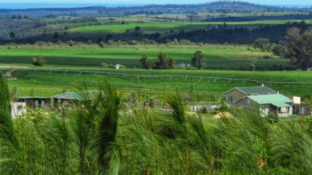 Rheenedal farming area