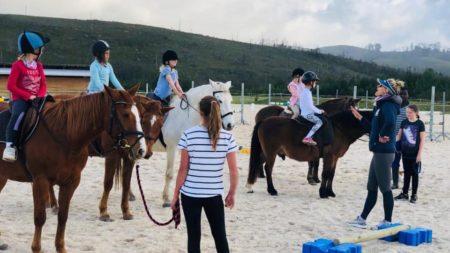 DP Equestrian