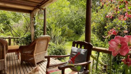 Peace of Eden eco forest Lodge & Vegan Café