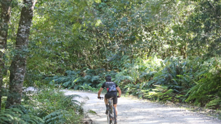 Diepwalle to Harkerville: Petrus-se-Brand cycle route