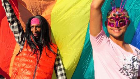 Pink Loerie Mardi Gras - Knysna