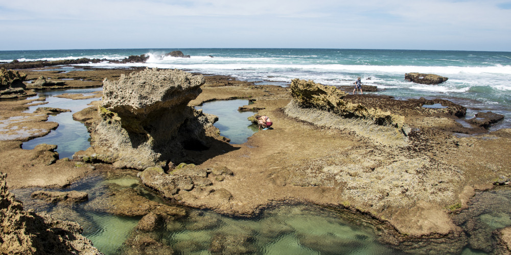 Tidal pools at Gericke's Point