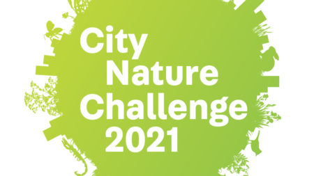 Garden Route City Nature Challenge