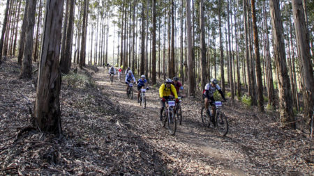 Knysna Cycle Tour_MountainBikeRoute
