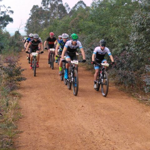 Circles in the Forest TrailRun MTB